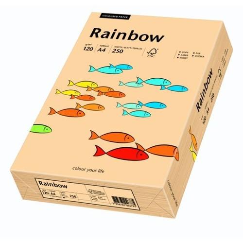 Kopierpapier tecno colors 40 A4 120g lachs Pastellfarben (PACK=250 BLATT) Produktbild Additional View 1 L
