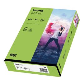 Kopierpapier tecno colors 76 A4 120g grün Intensivfarben (PACK=250 BLATT) Produktbild