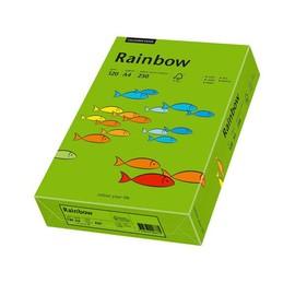 Kopierpapier Rainbow Intensiv 78 A4 120g intensivgrün 88042678 (PACK=250 BLATT) Produktbild