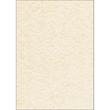 Struktur-Papier Inkjet+Laser+Kopier A4 90g Perga champagne Sigel DP605 (PACK=100 BLATT) Produktbild