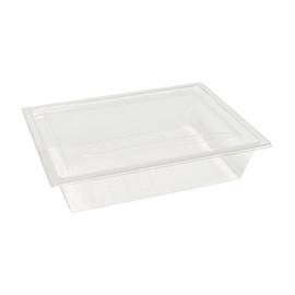 PET Salat-Rechteckschale mit Deckel mmmhh 207x155x45,5mm transparent (KTN=150 STÜCK) Produktbild