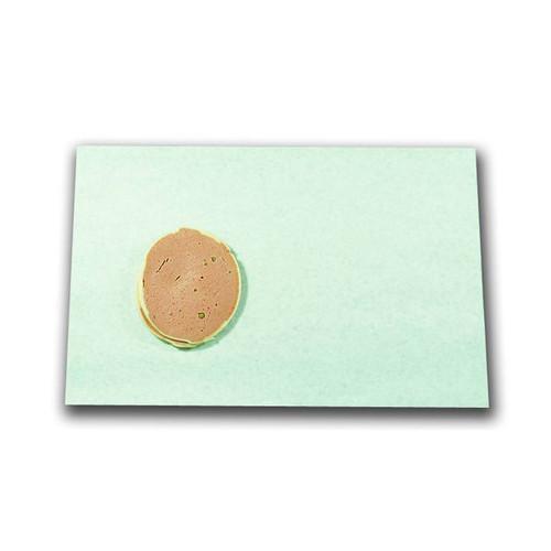 Pergament gebleicht fettdicht 1/4 Bogen 38x50cm 50g weiß Brutto für Netto (KTN=12,5 KILOGRAMM) Produktbild Front View L